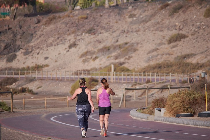 יום ההליכה העולמי: שתי נשים הולכות בצידי כביש