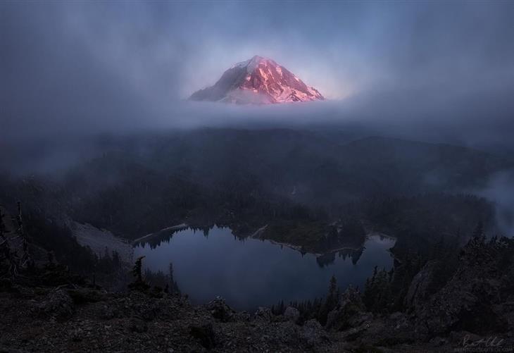 תמונות טבע מדהימות מארצות הברית: הר ריינייר שבוושינגטון נראה כאילו הוא מרחף מעל לעננים בשעת שקיעה