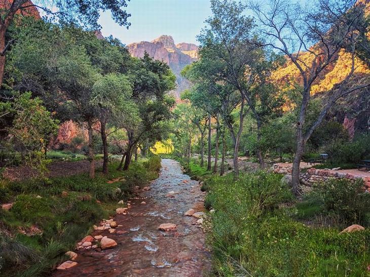 תמונות טבע מדהימות מארצות הברית: הגראנד קניון שבאריזונה במלמטה