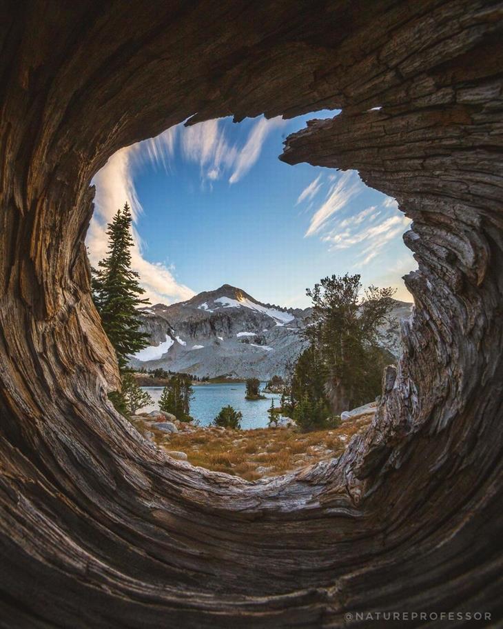 תמונות טבע מדהימות מארצות הברית: אגם גליישר דרך גזע עץ חלול