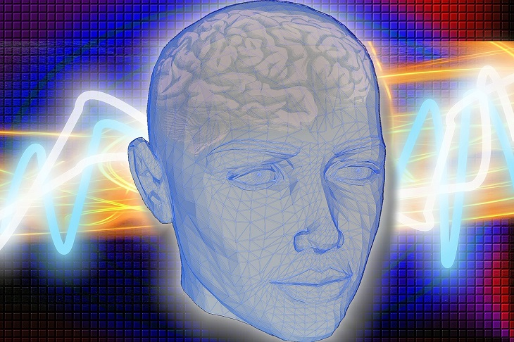 יתרונות החציל: איור של ראש אנושי ובתוכו מוח, כשגלים חשמליים סובבים אותו