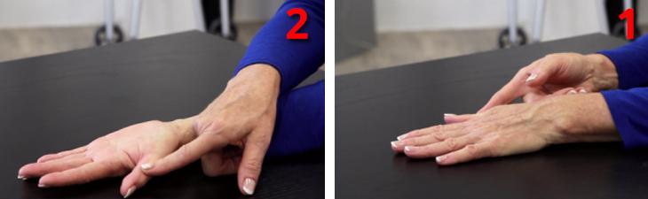 ריפוי בעיסוק לחיזוק ידיים חלשות: הדגמת תרגיל סיבוב כף היד