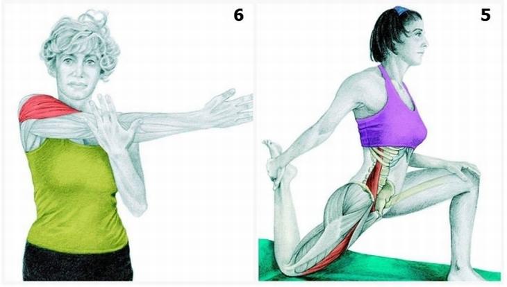 תרגילי מתיחות עם הסברים לשרירים הפועלים: חצי כריעה ומתיחת כתף