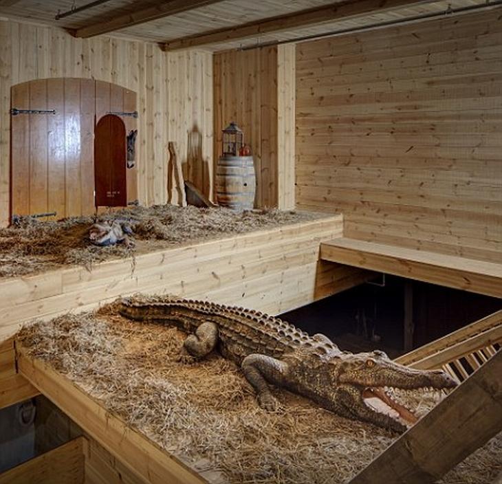הולנדי שבנה את תיבת נח: תנין בתיבת נח