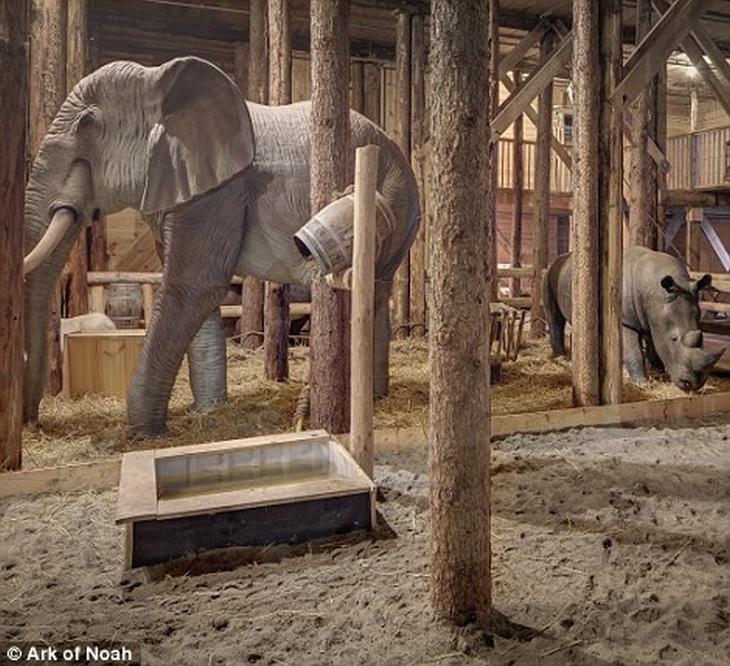 הולנדי שבנה את תיבת נח: פיל וקרנף בתיבת נח