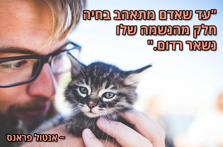 """ציטוטים על חיות מחמד והאדם: """"עד שאדם מתאהב בחיה חלק מהנשמה שלו נשאר רדום"""" ~ אנטול פראנס"""