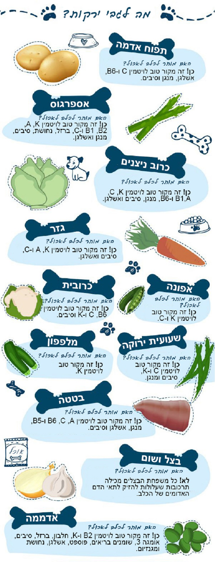 האם הכלב שלי יכול לאכול את זה: ירקות - אסור ומותר