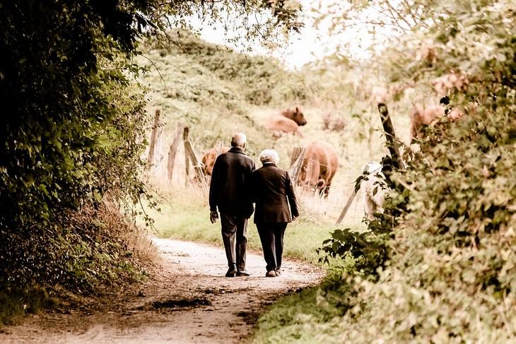 חוסרים תזונתיים לאחר גיל 40: זוג מבוגרים הולכים יד ביד בשביל בטבע