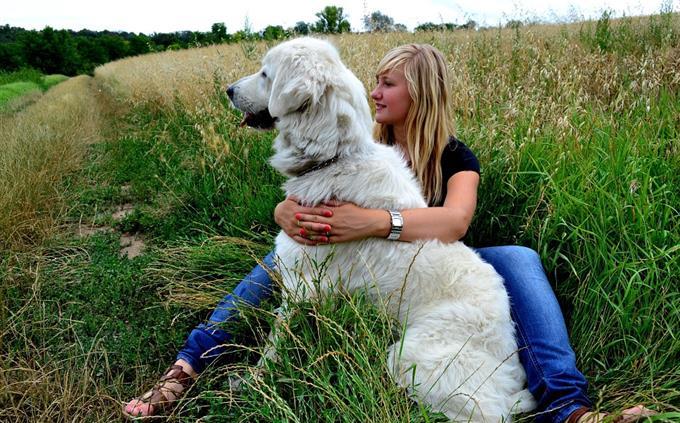מבחן זיכרון: אישה מחבקת כלב