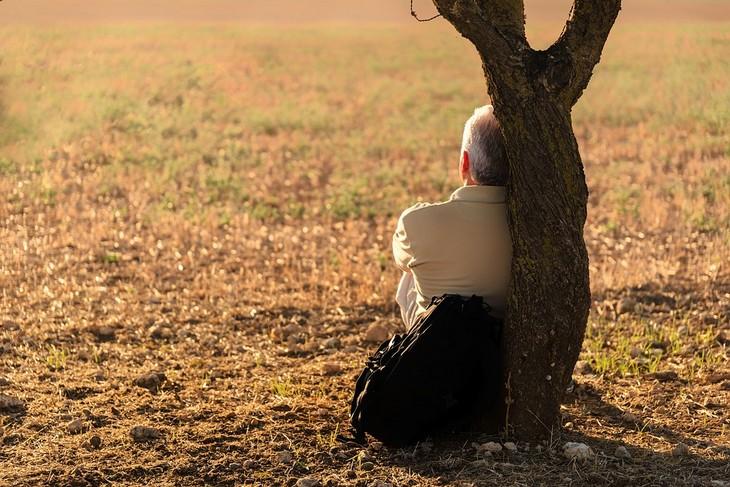 סימנים לאהבה חדשה: גבר יושב ונשען על גזע עץ ולידו מונח תיק