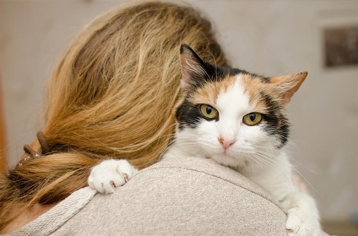 טיפים שיגרמו לחתולים לחבב אתכם: אישה מחבקת חתול