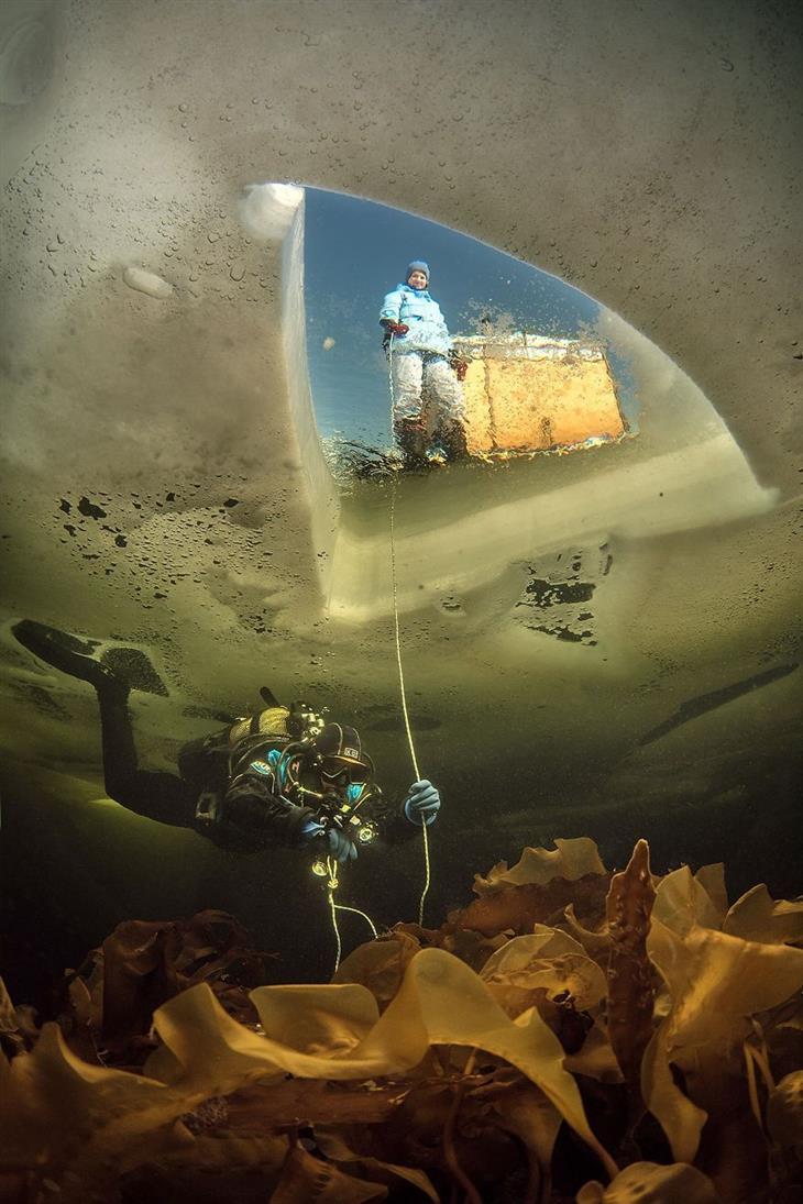 תמונות טבע מדהימות: צוללן מתחת למים קפואים