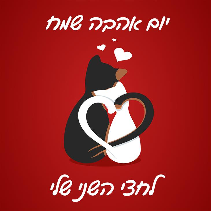 ברכות ליום האהבה: יום אהבה שמח לחצי השני שלי