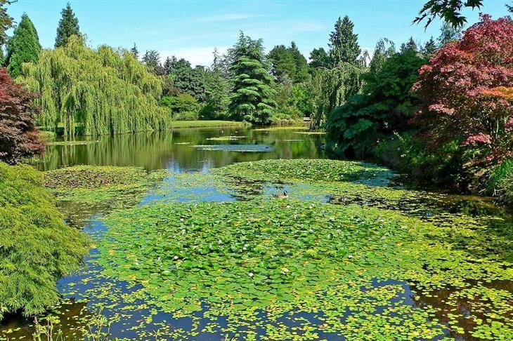 ערים ופארקים בקנדה: הגן הבוטני ואן דוזן