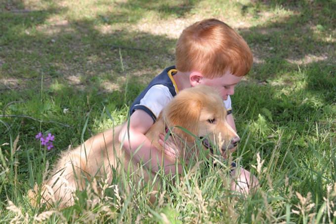 מבחן אישיות חוש מפותח: ילד מחובק עם כלב