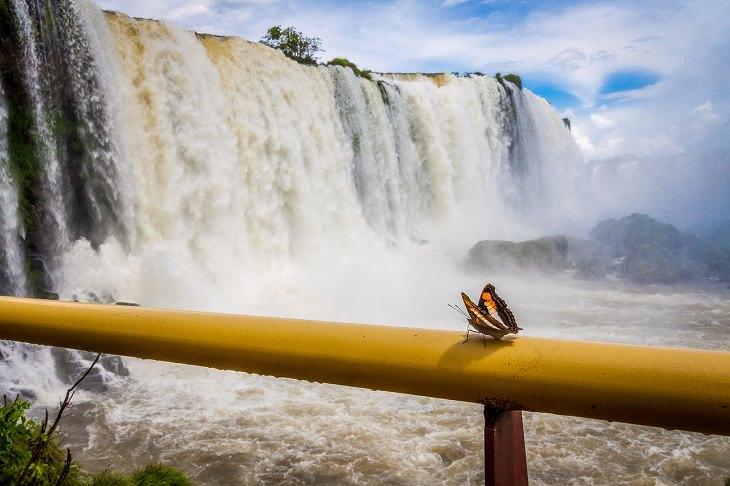 יעדים מומלצים בארגנטינה: מפלי האיגואסו
