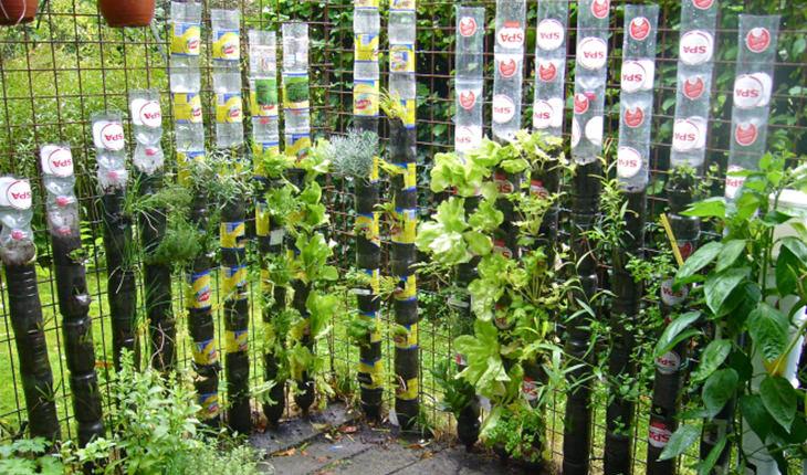 מדריכים להכנת גינות אנכיות: מגדל בקבוקים