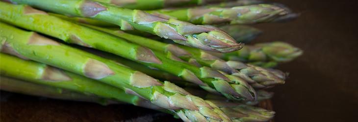מזונות על מומלצים לגברים ונשים: אספרגוס