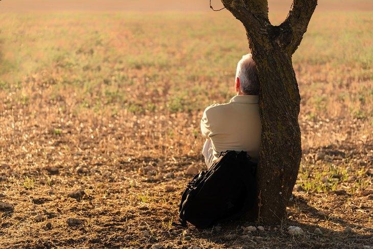 עצות רוחניות של פמה צ'ודרון: גבר יושב ונשען על עץ בפארק
