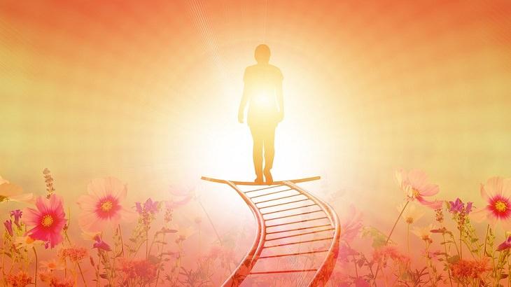 טיפים להתגברות על כישלון: צלילת של אדם על על סולם בשדה פרחים