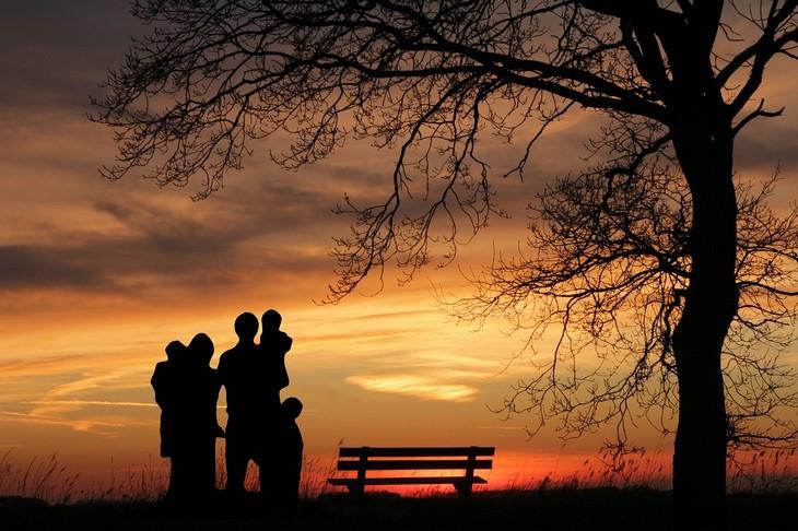 טיפים מאימא: משפחה עומדת ליד עץ בשקיעה