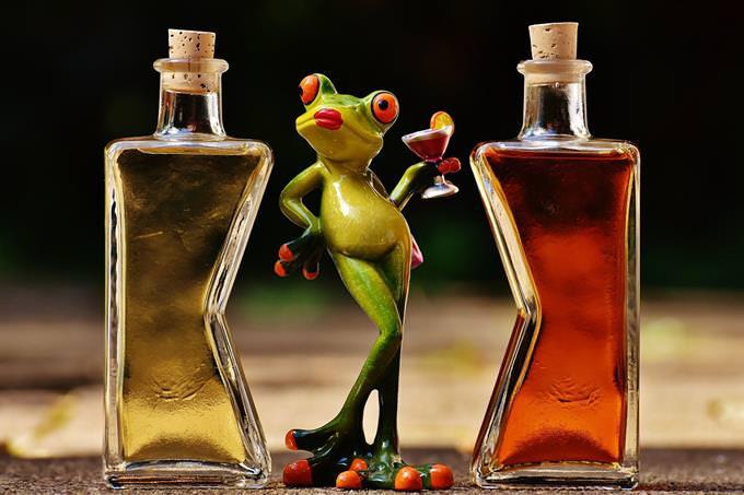 בחן את עצמך: בובה של צפרדע לצד בקבוקי משקאות