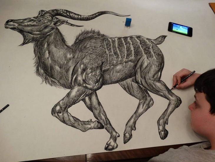 דושאן קרטוליצה: מצייר דישון