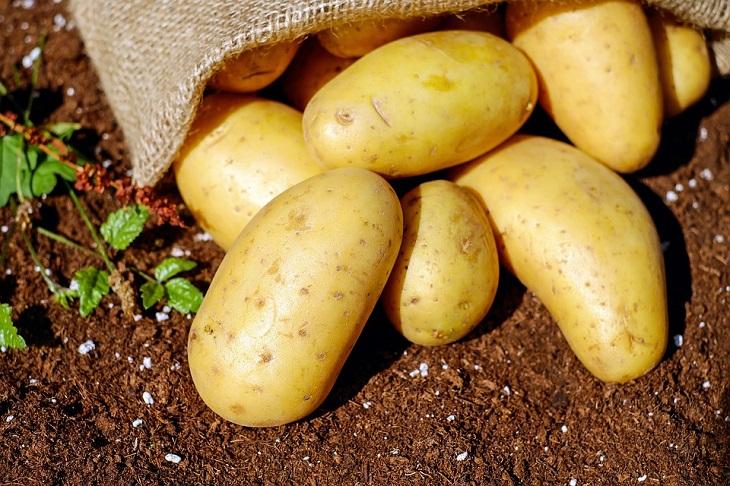 פחמימות מורכבות: תפוחי אדמה