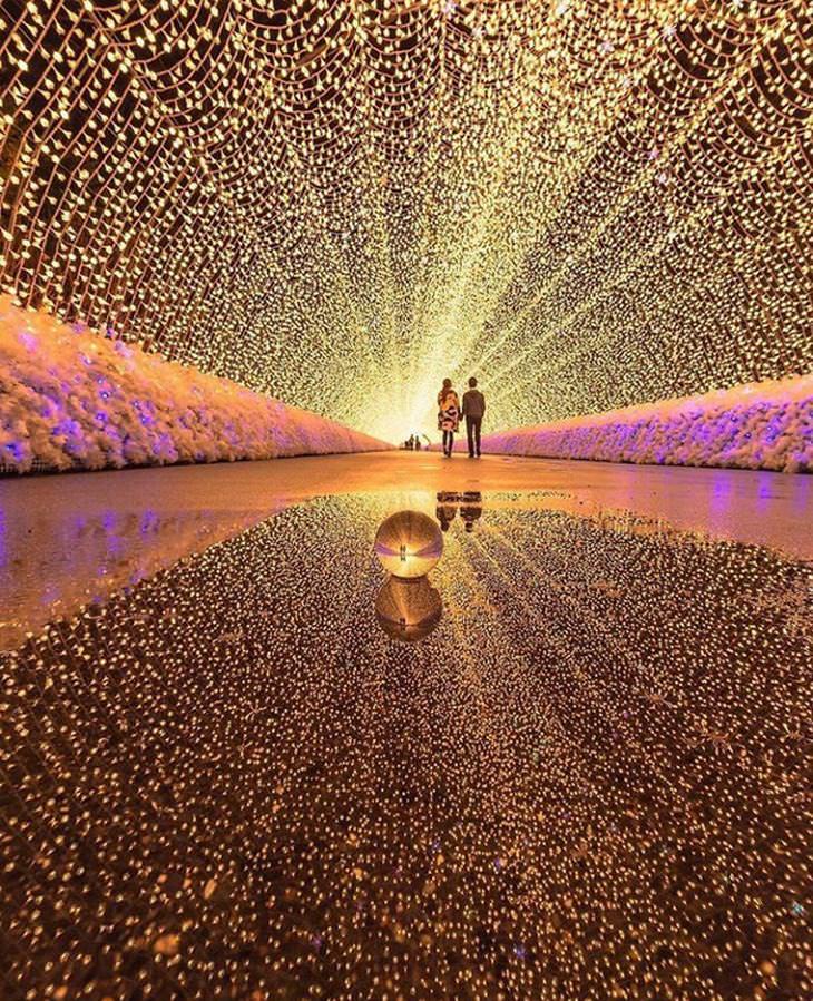 תמונות נפלאות: מנהרת אורות רומנטית ביפן
