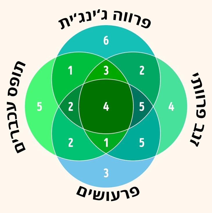 חידות: מספרים בתוך עיגולים חופפים