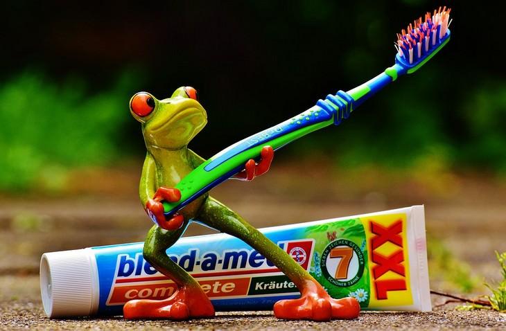 מיתוסים על רפואת שיניים: בובת צפרדע מחזיקה מברשת שיניים וברקע משחת שיניים