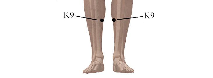 נקודות לחיצה לטיפול בלב ובזרימת הדם: K9