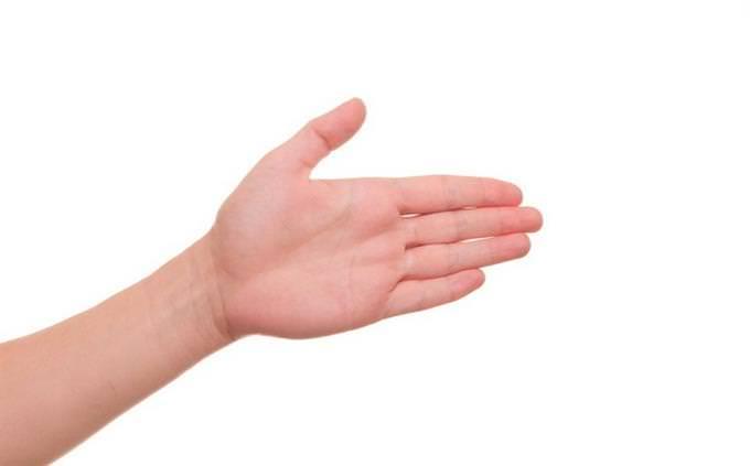 כמה אתה מוכן לחופשה: יד שמאל