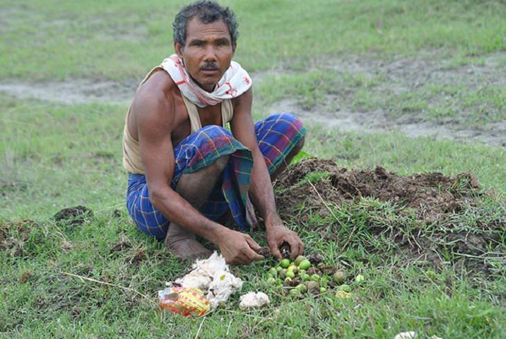 הגנן ההודי שמציל את האי מג'ולי: ג'אדאב פיינג
