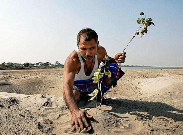 הגנן ההודי שמציל את האי מג'ולי: ג'אדאב פיינג שותל עץ באי מג'ולי