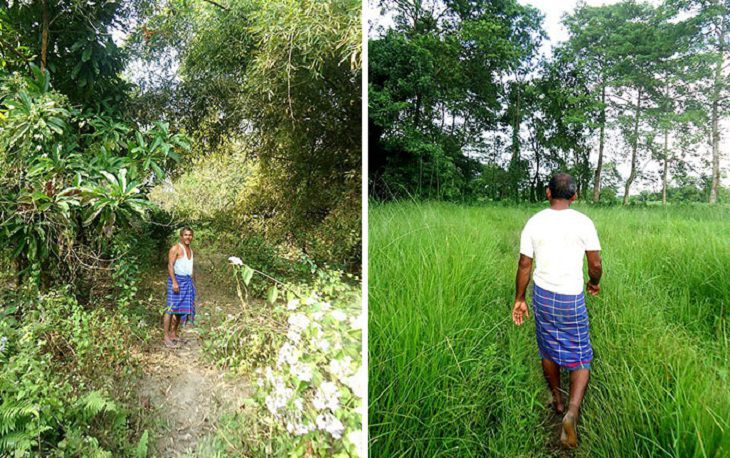 הגנן ההודי שמציל את האי מג'ולי: ג'אדאב פיינג באי מג'ולי