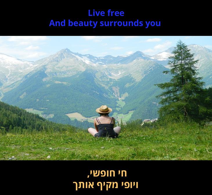 """""""נולדת חופשי"""" - שירו של מאט מונרו: """"חי חופשי, ויופי מקיף אותך"""""""
