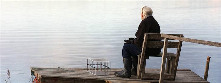 משל הקשישה והצבים: אישה קשישה יושבת על מזח לצד אגם, ולצדה כלוב ברזל