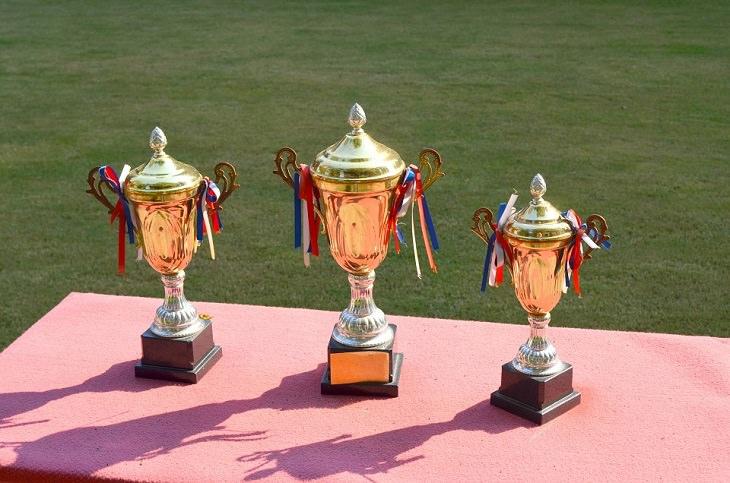 כלבים מחזיקי שיאי גינס: שלושה גביעים מונחים על שולחן