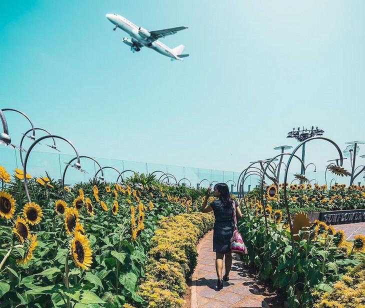 נמל התעופה הטוב ביותר בעולם: נמל התעופה סינגפור צ'נגי