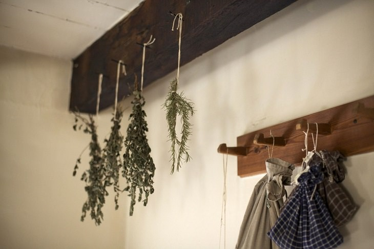 טיפים לשמירה על טריות עשבי תיבול: צרורות עשבי תיבול תלויים מהתקרה במהופך
