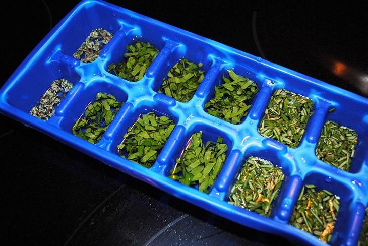 טיפים לשמירה על טריות עשבי תיבול: מגש קרח עם עשבי תיבול קצוצים בתוכו