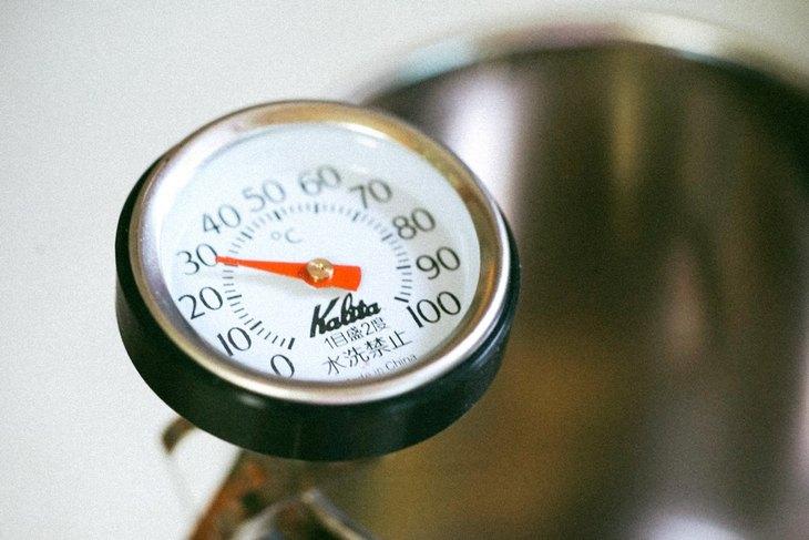 10 טיפים למטבח: מד חום לבישול