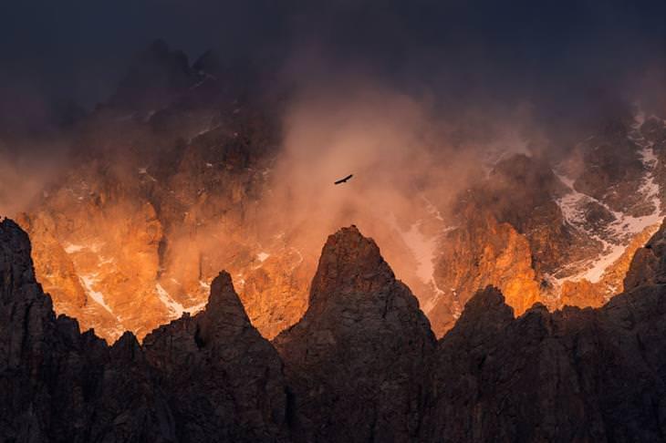 תמונות טבע מקירגיזסטן: הרי אלה ארצ'ה ועיט עף מעליהם