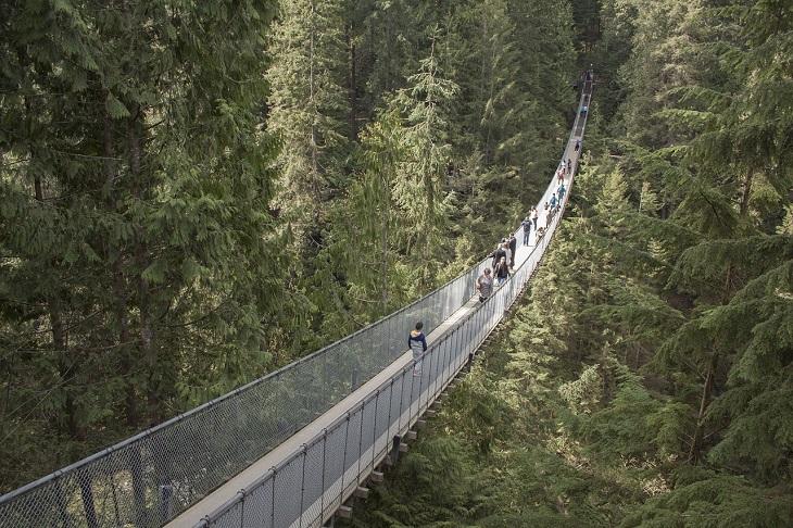 מקומות יפים ולא מוכרים בעולם: הגשר התלוי קפלינו