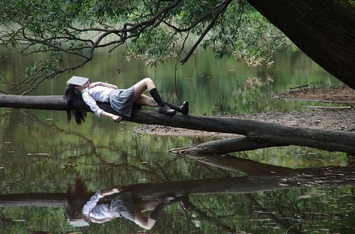 הסיבות לדחיינות: נערה שוכבת על ענף מעל מים וספר מכסה את ראשה
