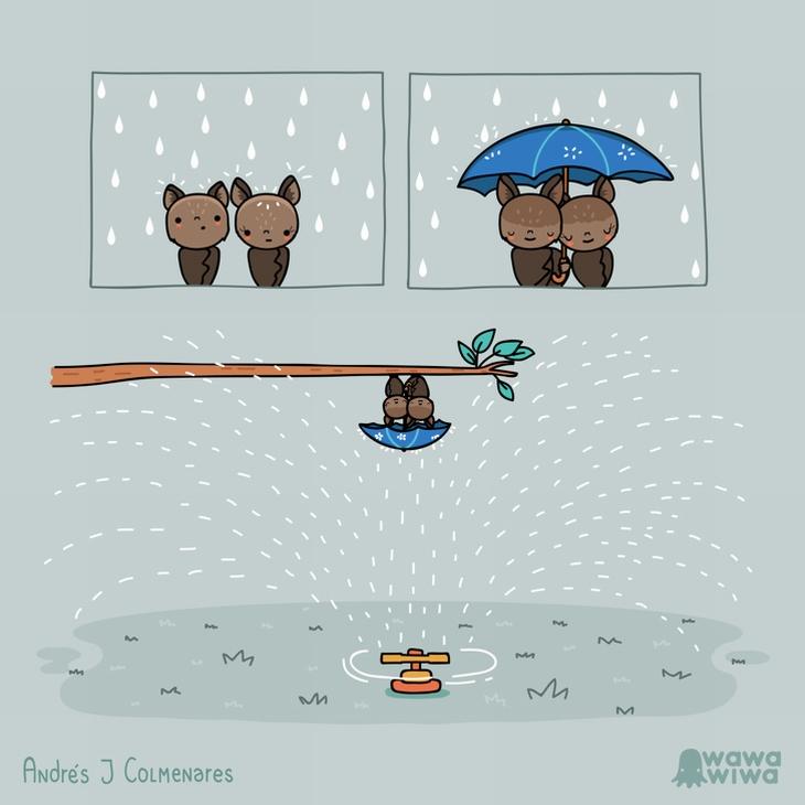 איורים משעשעים: שני עטלפים עם מטריה מתגוננים מפני מי ממטרה, כשהם תלויים הפוכים