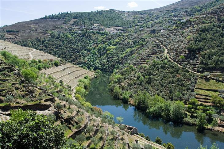 אתרי טבע ופארקים בפורטוגל: הפארק הבינלאומי דואורו