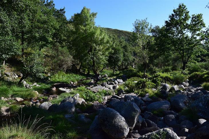 אתרי טבע ופארקים בפורטוגל: פארק אלוואו