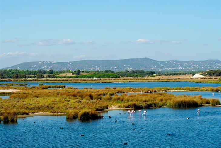 אתרי טבע ופארקים בפורטוגל: פארק ריה פורמוסה